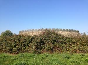 Slavic Fort Raddusch